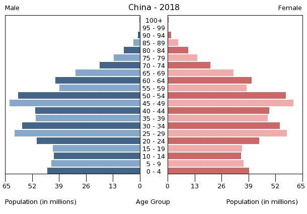 Population pyramid of China